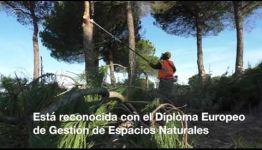 APRENDE A DISTANCIA Y CONVIÉRTETE EN ESPECIALISTA EN GESTIÓN DE ESPACIOS NATURALES: VALORACIONES QUE NOS DAN LOS EXPERTOS