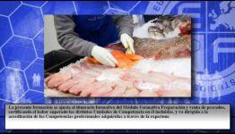 FORMACIÓN PARA SER ELABORADOR DE CONSERVAS DE PRODUCTOS DE LA PESCA: LOS ESPECIALISTAS COMENTAN Y NOS CUENTAN SUS EXPERIENCIAS