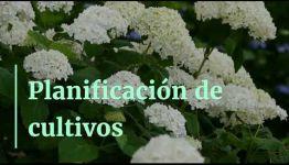 TEMARIO Y SALIDAS PROFESIONALES DEL CURSO DE FP PAISAJISMO Y MEDIO RURAL: VÍDEO INFORMATIVO