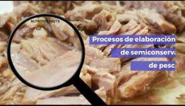 DESARRÓLLATE COMO PROFESIONAL AL TITULARTE COMO ELABORADOR DE CONSERVAS DE PRODUCTOS DE LA PESCA: TEMARIO Y SALIDAS PROFESIONALES DEL CURSO