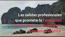 ASIGNATURAS Y SALIDAS PROFESIONALES DEL CURSO A DISTANCIA DIRECCIÓN Y GESTIÓN DE LA EMPRESA TURÍSTICA: VÍDEO INFORMATIVO